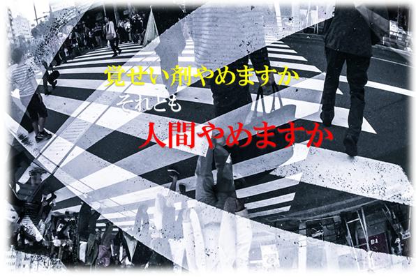 SnapCrab_NoName_2016-2-4_53o-00